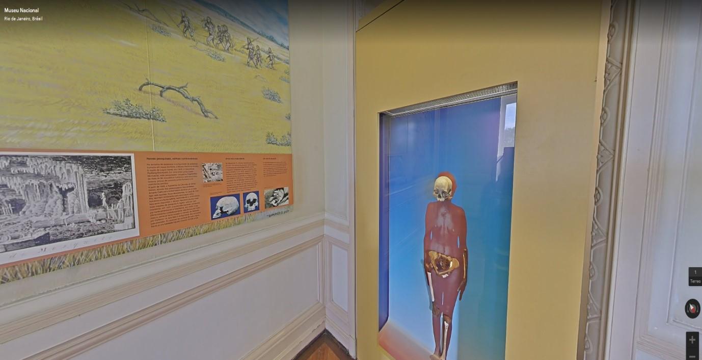 Visite de musées virtuels : le Musée National du Brésil